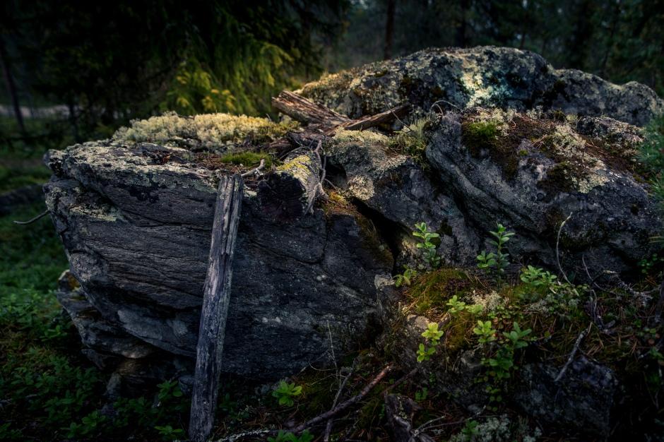 MarjaKurki©MaricaRosengard-5682